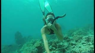 Video Freediving Thailand 2017 Girl Freedive Uncut Hot !!! download MP3, 3GP, MP4, WEBM, AVI, FLV Mei 2018