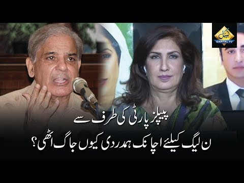 CapitalTV: Why PPP suddenly started to show sympathy for PMLN?