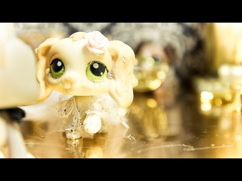 Littlest Pet Shop: The Enchanted Quest (Part 7 ✧ Captured!)