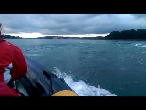 Whirlpools at Strangford Lough