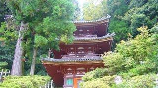 松尾寺 法隆寺の東院とよばれ、今も法隆寺へと続く小路がある。 日本最...
