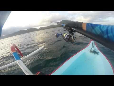 Abu Garcia Offshore Shooter vs Giant Trevally