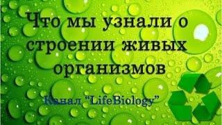 Что мы узнали о строении живых организмов