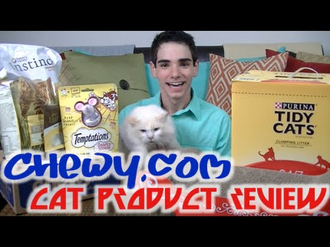 Chewy com Cat Product Review! | Jason Caceres