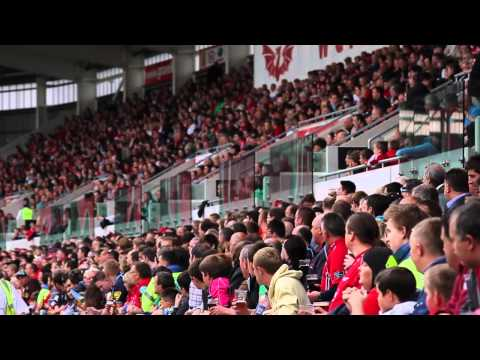 The Parc y Scarlets experience