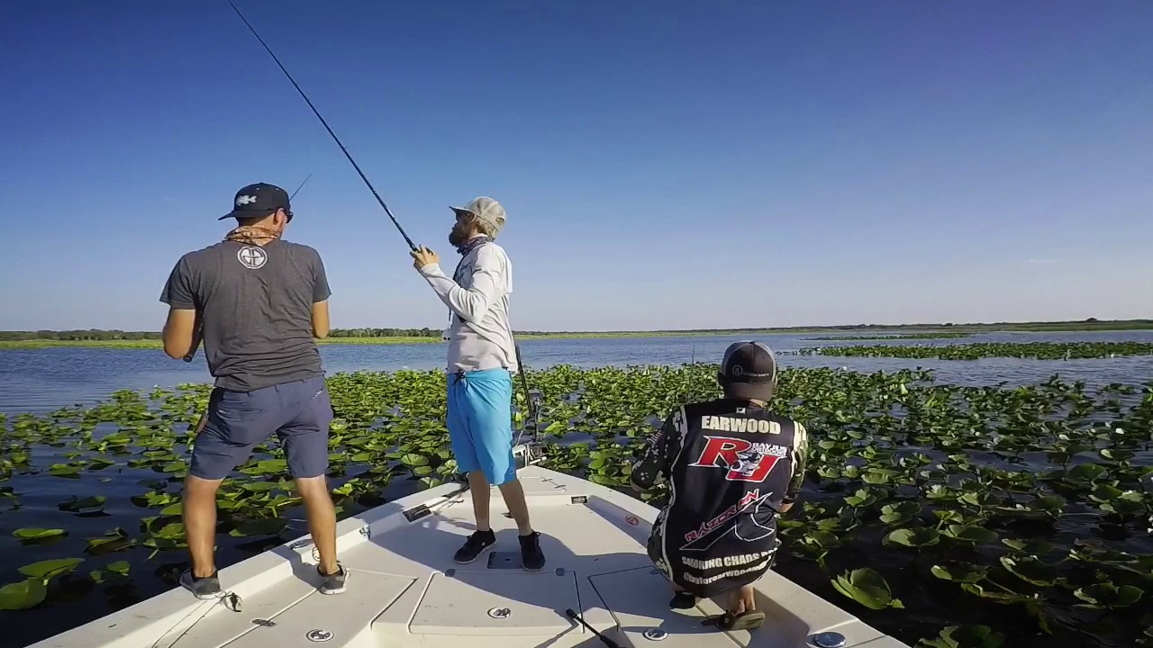 Central florida bass fishing clip from west lake lake for Lake kissimmee fishing report
