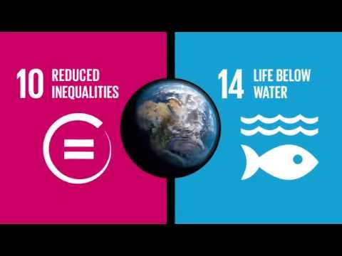 UN Global Goals: Life Below Water, Reduced Inequalities Final