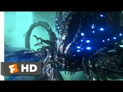 Skyline (2010) - They're After Your Brain Scene (4/10) | Movieclips