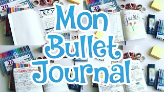 mon bullet journal prsentation