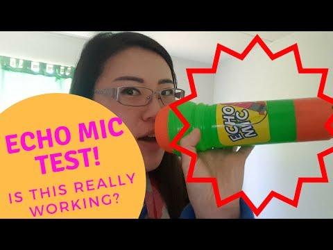 Echo Mic Test