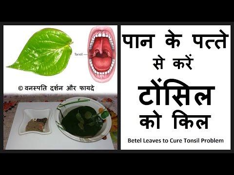 पान के पत्ते से करें टोंसिल को किल Paan ka Patta Karega Taunsil Door With English Subtitle