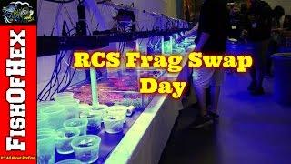 Baixar RCS Frag Swap @ That Fish Place, Lancaster PA Oct 15 2016