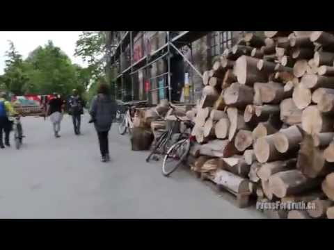 The Anarchist Haven - This Is Christiania
