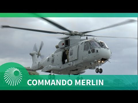 Exclusive: Commando Merlin Carrier Deployment