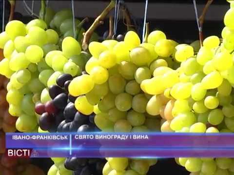 Свято винограду та вина