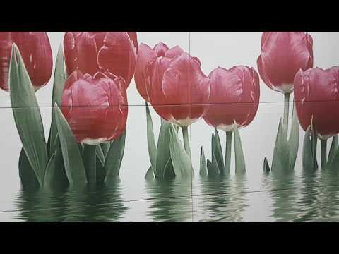 Фреш  Нефрит Керамика (Тюльпаны)