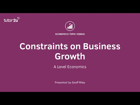 Constraints on Business Growth