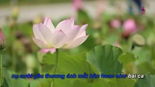 Karaoke Niềm hy vọng (có lời) - Huỳnh Lợi