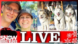 LIVE QnA and Mail Unboxing with Snow Dogs Vlogs
