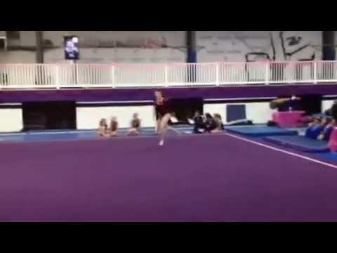 phantom gymnastics valentine meet