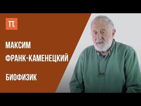 видео: Что я знаю — БИОФИЗИКА КАК НАУКА // Биофизик Максим Франк-Каменецкий на ПостНауке