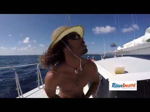 Bluebeard Charters - Arawak And Bluebeard