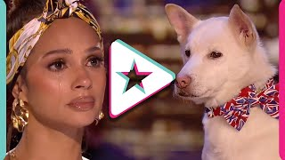 Proof That DOGS ARE MAGIC! Super Emotional Audition Leaves All Judges In TEARS!