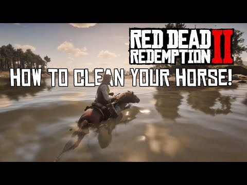 How to CLEAN YOUR HORSE / Red Dead Redemption 2