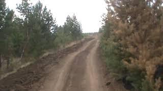 Акция Посади Лес в Иркутской области 2019 часть 6