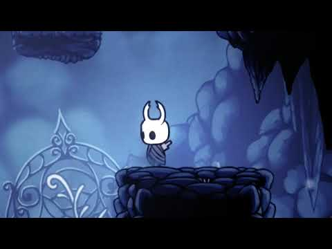 Hollow knight best options