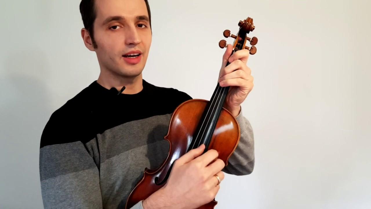 Teil Der Geige
