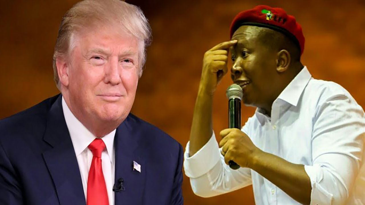 Julius Malema Responds To Donald Trump's Veiled Threats At South Africa