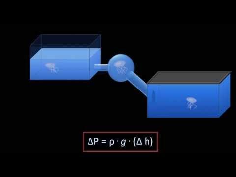 Hydrostatic Pressure (Fluid Mechanics - Lesson 3)
