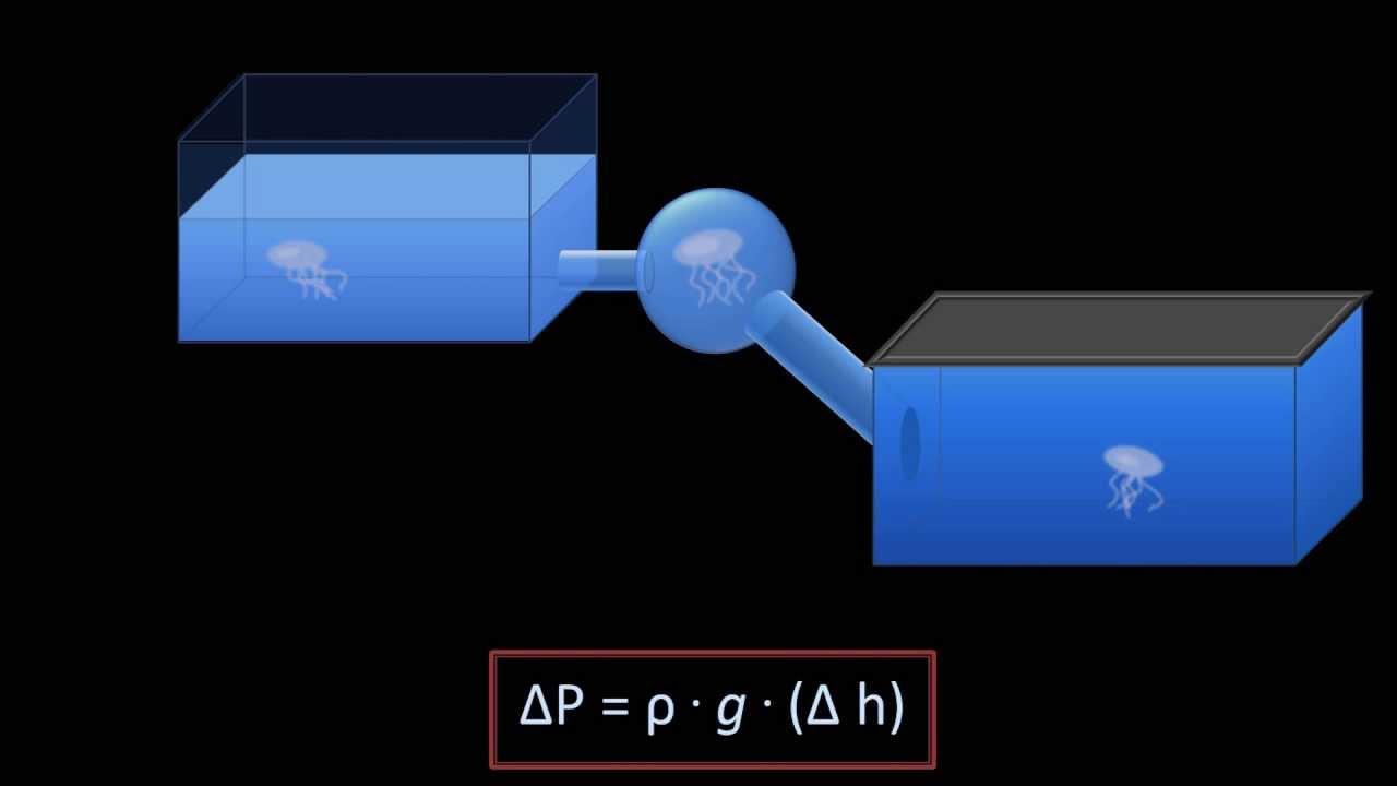 Download Hydrostatic Pressure (Fluid Mechanics - Lesson 3)