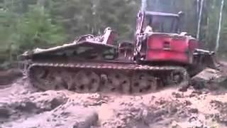 Прикол в лесу