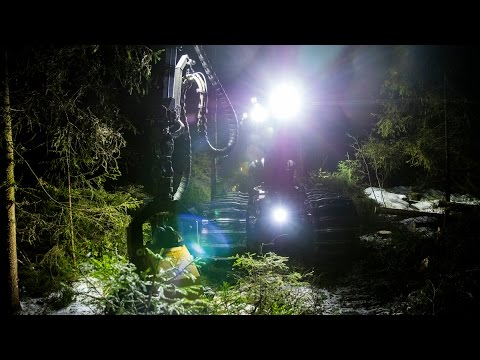 NORDIC LIGHTS - FORESTRY HARVESTER WITH SCORPIUS LED (HD)