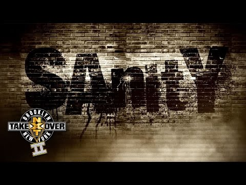 What is Sanity?: NXT TakeOver: Brooklyn II, only on WWE Network