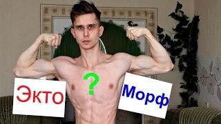 Кто такой Эктоморф?