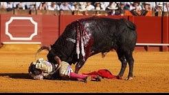 OJE OLÉ: Mallorca führt blutigen Stierkampf wieder ein