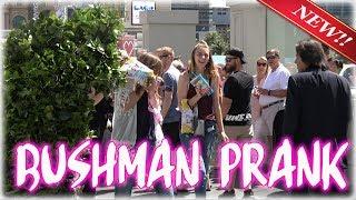 PRANK - FUNNY VIDEO -  S05E41 BUSHMAN Ryan Lewis