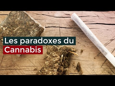 Les paradoxes du Cannabis - Documentaire français 2017