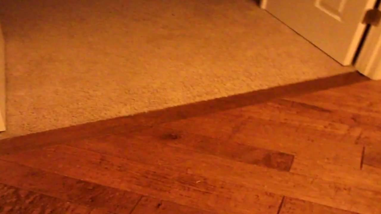 Carpet To Wood Transitions Before And After Job 2 25 2010 Wmv