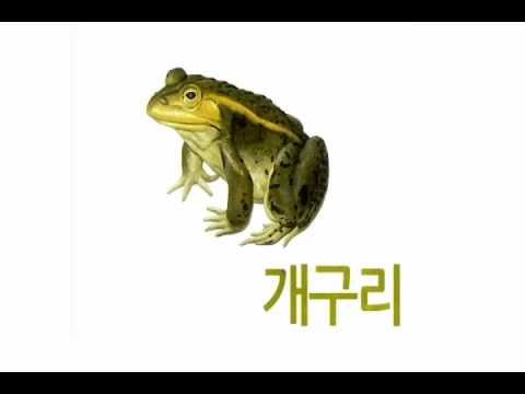 구몬 한글 3호 (챈트 동영상)