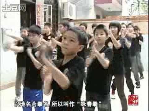 Mainland China News on Wing Chun