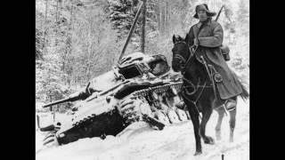 Лошади и война