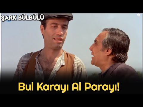 Şark Bülbülü - Bul Karayı Al Parayı!
