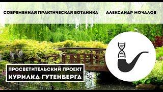 Cовременная практическая ботаника – Александр Мочалов