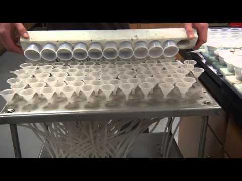 Soil Testing: Laboratory Process