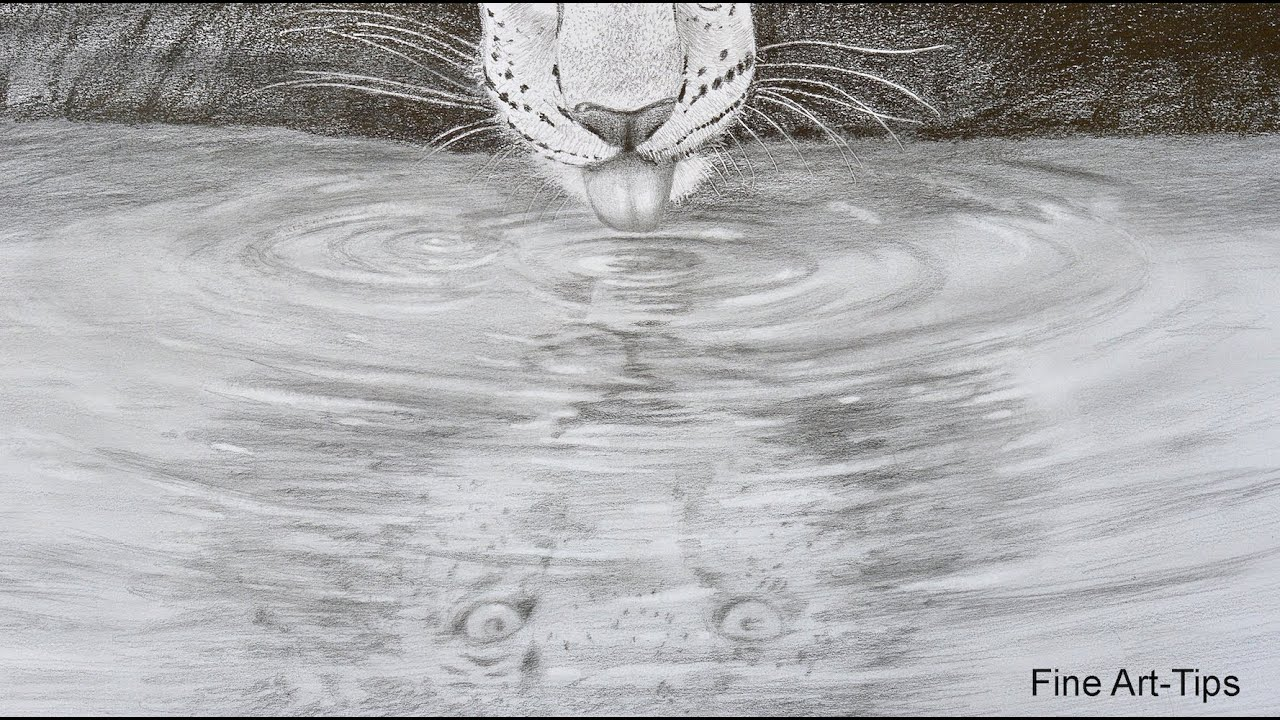 How To Draw A Reflection On Water - A Leopard Drinking Water - YouTube