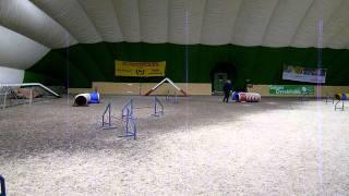 Kanutten agility 14.2.2012